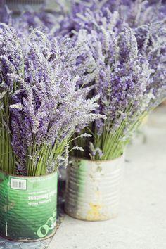 lavender and myrrh Flower Arrangements, Purple Flowers, Lavender Flowers, Plants, Lavender Farm, Lavender Blue, Beautiful Flowers, Lavender Cottage, Flowers