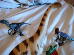 Dinosaurs for Children- Dinosaur Song Dinosaur Songs, Dinosaur Videos, Naughty Kids, Dinosaurs Preschool, Science Videos, Kindergarten Science, Class Room, Educational Videos, Reading Strategies