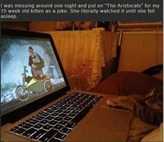 Funny Pictures Of The Day – 82 Pics