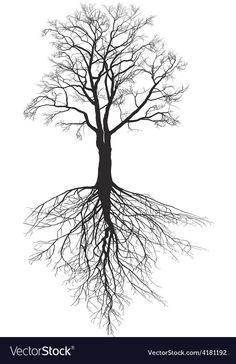Walnut tree with roots Royalty Free Vector Image - Walnut tree with roots Royalty Free Vector Image - Tree Roots Tattoo, Tree Sleeve Tattoo, Tree Tattoo Men, Celtic Tree Tattoos, Deer Tattoo, Raven Tattoo, Cat Tattoo, Tattoo Ink, Sleeve Tattoos