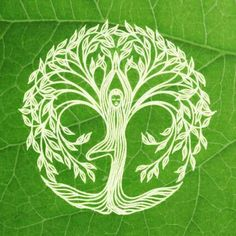 Find inner peace and balance... be a tree <3