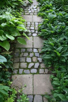 Rustic stone paving enhanced by moss. Garden Paving, Garden Stones, Garden Paths, Garden Landscaping, Stone Walkway, Paving Stones, Stepping Stones, Big Leaf Plants, Herb Garden Design