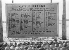 Signboard near Miles City Montana. Montana Ranch, Montana Homes, Miles City Montana, Montana Cowgirl, Big Sky Country, Back Road, Old Barns, Ghost Towns, Cattle