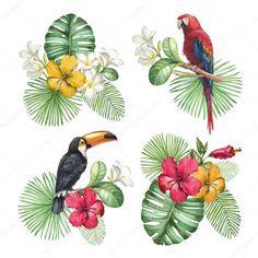 Ilustrações em aquarela de flores tropicais e aves