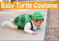 Baby Turtle Costume for Erin
