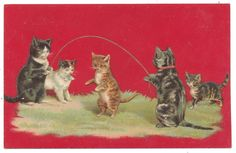 Helena Maguire - Cats Play Jump Rope