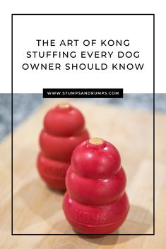 Check out these easy DIY dog frozen kong stuffing recipes that every dog owner should know. Dog Biscuit Recipes, Dog Treat Recipes, Dog Food Recipes, Kong Treats, Dog Enrichment, Frozen Dog Treats, Yorky, Puppy Treats, Homemade Dog Treats