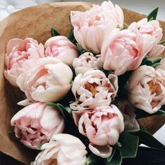 flowers, pink, and rose kép
