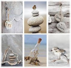 #sandcolor #sand #stone #bird