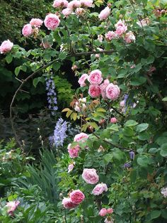 The romance of a French country garden - from My French Country Home, French Living - Sharon Santoni