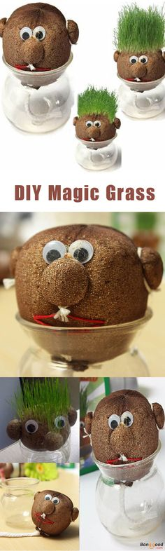 Educational as well as funny. Easy to set up. Being friendly and non-hazardous. You can have fun styling and trimming the grass as it grows to produce a hairstyle, or simply let it grow and grow. Buy now!