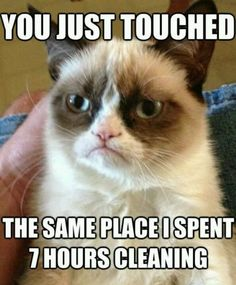 Ocd Cleaning Meme : cleaning, Problems