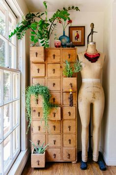 » DIY INSPIRATION | File Cabinet Succulent Storage