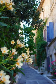 Bonnieux - My travel to Southern France | Paul Glory