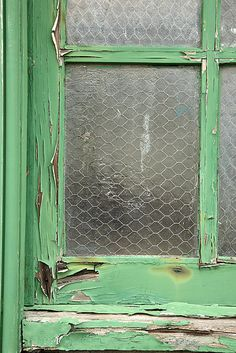 PAOLA d' ARCANO _ Salvia as a state of mind _ window