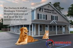 Our goal is to maximize the health of your pet. To achieve this we pledge to have a courteous, caring, and knowledgeable staff that is eager to be of service.
