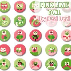 """Pink Lime Owl 16293 - Bottlecap images 1"""" size - Digital Collage Sheet - Inchies images for badge button - Kawaii cute design"""