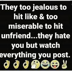 No Time For Bullshit, Jealous, Everything, Hate, Words, Horse