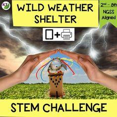 Survival Tips, Survival Skills, Wilderness Survival, List Of Activities, Science Activities, Wild Weather, Stem Steam, Stem Challenges, Stem Projects
