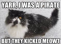 Arrr, I was a pirate, but they kicked meowt.