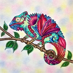 Colored Mostly With Pastel Chalks For The Background A Little Bit Of Ink And Embellishment By Emily Laughlin