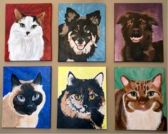 2 Students Paint Your Pet wall! Fabulous work they did! Paint Your Pet, Students, Pets, Wall, Painting, Fictional Characters, Painting Art, Walls, Paintings