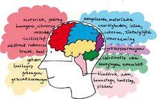 De ziekte van Alzheimer 1
