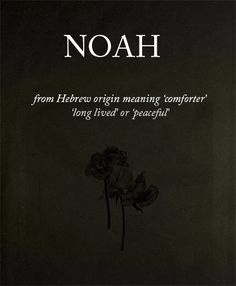 Name meaning: Noah if it's a boy Baby Names And Meanings, Names With Meaning, Name Meanings, Character Quotes, Character Names, Noah Name, Jandy Nelson, Baby Name List, Creative Names