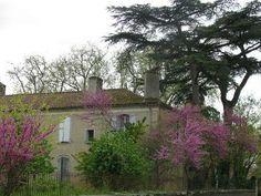 Masseube - An former convent or hostital - Gers dept. - Midi-Pyrénées région, France      ...www.paperblog.fr