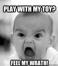 Play with my toy.  Feel my wrath.
