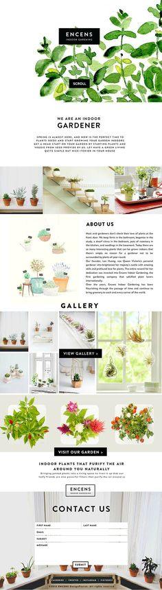 ENCENS on Behance - Illustrated Website Design