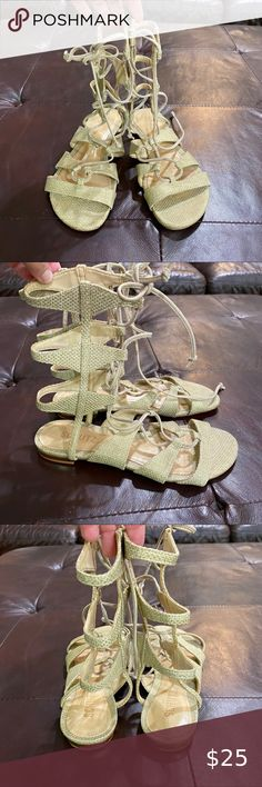 "Schuts pre-owned size 6.5 Pre-owned Good condition  Size 6.5   SCHUTZ Women's Erlina Gladiator Sandal  100% Leather Imported Leather sole Shaft measures approximately 7.75"" from arch Heel measures approximately 0.5"" Platform measures approximately 0.25 inches Gladiator sandal with lace up detail SCHUTZ Shoes Sandals"