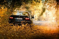 BMW E39 M5 black fall