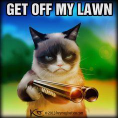 Grumpy Cat Get off my Lawn 2013 by ~Keymagination on deviantART #Tard #GrumpyCat