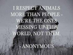 I respect animals more than people we're the ones messing up this world not them | Anonymous ART of Revolution