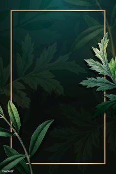 High Hd Wallpaper, Framed Wallpaper, Pattern Background, Vector Background, Green Backgrounds, Wallpaper Backgrounds, Tropical Background, Natural Background, Splash Images