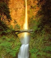 Image result for multnomah falls: Multnomah Falls is a waterfall on the Oregon side of the Columbia River Gorge, located east of Troutdale, between Corbett and Dodson, along the Historic Columbia River Highway  https://en.wikipedia.org/wiki/Multnomah_Falls