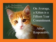 Adopt Responsibly....