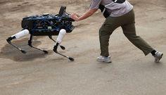 #ROBOT #DOG: #GOOGLE LOOKS FOR NEW OWNER...