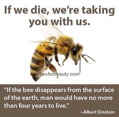 Stop using pesticides and help the bees who help us.