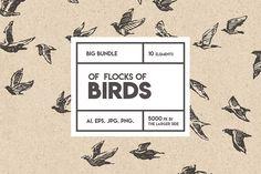 Flocks of birds, sketch style - Illustrations
