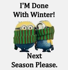 humor laughing so hard For all Minions fans this is your lucky day, we have collected some latest fresh insanely hilarious Collection of Minions memes and Funny picturess Minion Humour, Funny Minion Memes, Minions Quotes, Funny Humor, Image Minions, Minions Love, Minions Fans, Minion Pictures, Funny Pictures
