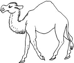 Camels, Coloring, Pets, Animals, Animales, Animaux, Animal, Animais, Animals And Pets