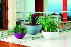 Delano Planter Set:  Rotationally molded resin planters provide a great value given the 10 year limited warranty - they are crack and fade proof making them the perfect planters for even extreme weather conditions. High design that will make a statement in any location. Lightweight and easy to handle.