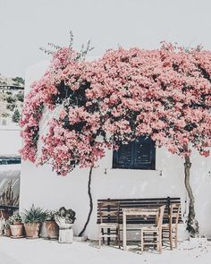 days of camille: trip in greece: les cyclades - paros Beautiful World, Beautiful Places, Beaux Villages, Adventure Is Out There, Belle Photo, Scenery, Places To Visit, Wanderlust, Around The Worlds
