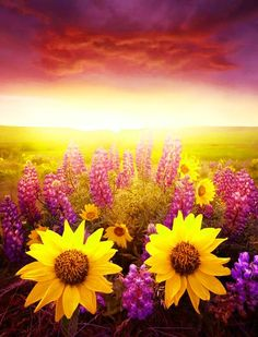 To get up each morning with the resolve to be happy…is to set our own conditions to the events of each day. To do this is to condition circumstances instead of being conditioned by them.~ Ralph Waldo Emerson