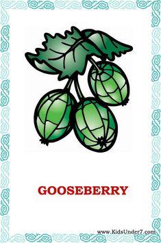 Скачайте карточки Фрукты и Ягоды на английском языке (Fruit and Berries).  Фрукты и Ягоды карточки для занятий.  Обучающие карточки для дет...