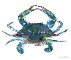 """Maryland Blue Crab"" Posters by Lynn Oliver 