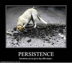 Persistence | ANB Promotions