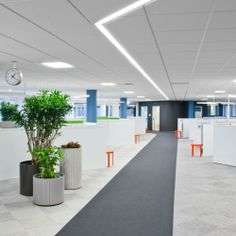 Clear path layout    ATG IT Department / Note Design Studio
